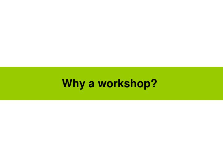 Why a workshop?
