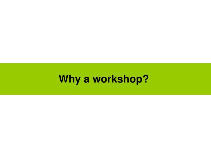 Why a workshop?