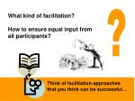 what kind of facilitation how to ensure equal input from all participants