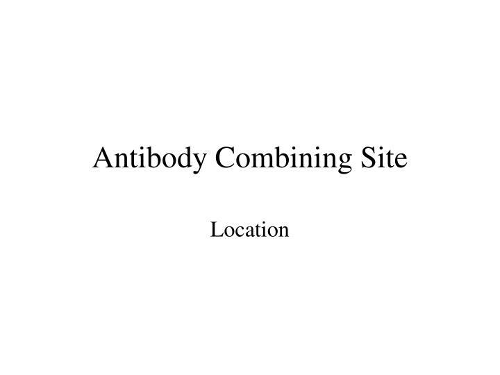 Antibody Combining Site