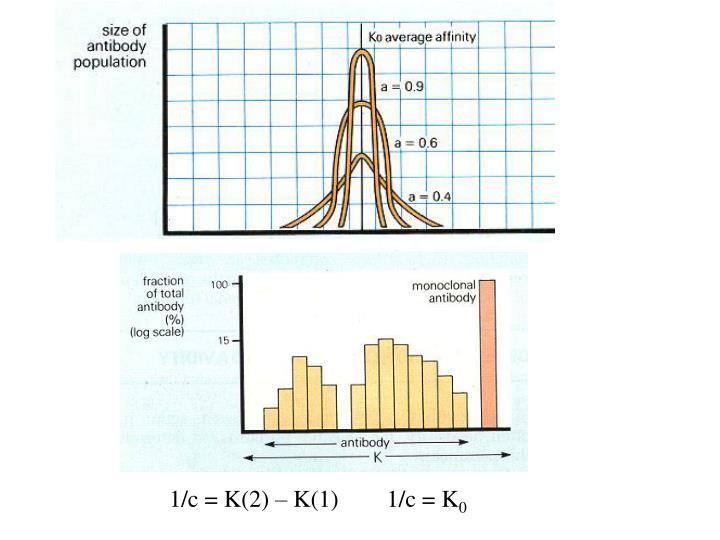 1/c = K(2) – K(1)        1/c = K
