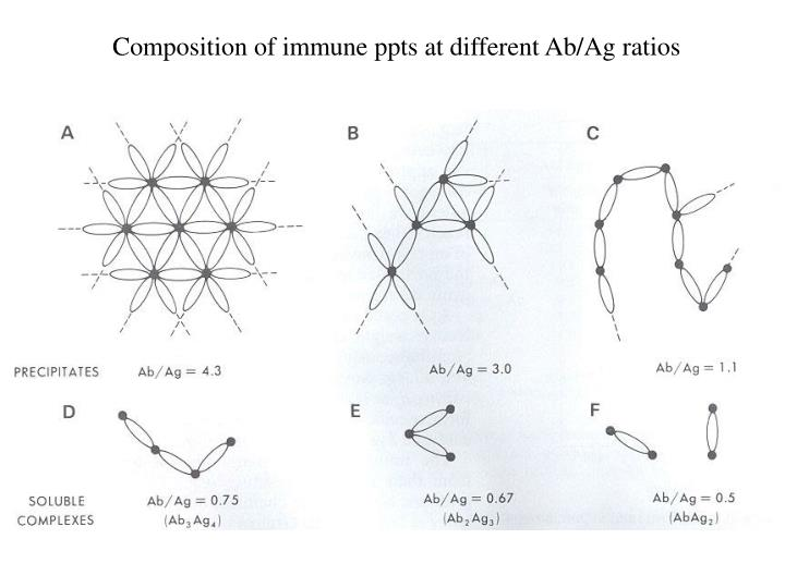 Composition of immune ppts at different Ab/Ag ratios