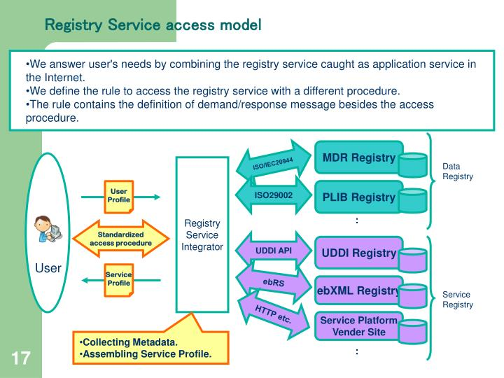Registry Service access model