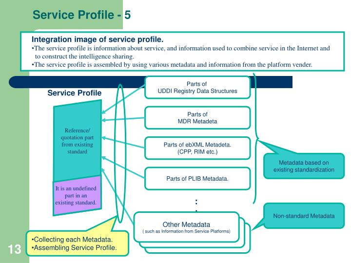 Service Profile - 5