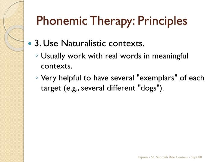Phonemic Therapy: Principles