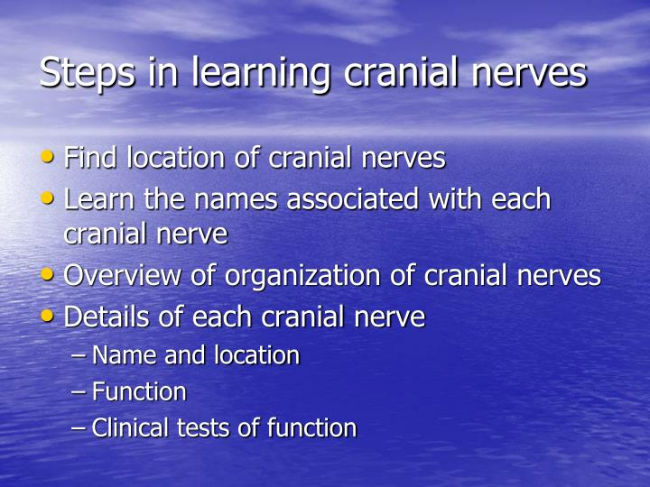 Steps in learning cranial nerves