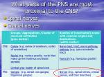 what parts of the pns are most proximal to the cns