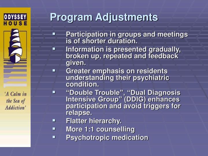 Program Adjustments