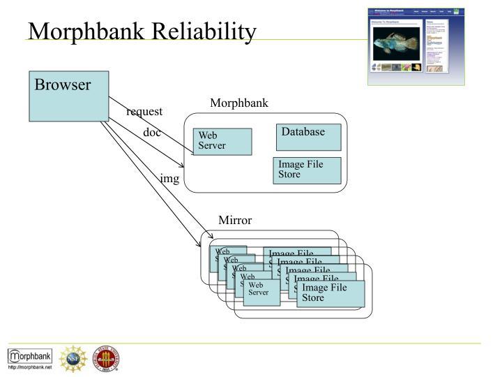 Morphbank Reliability