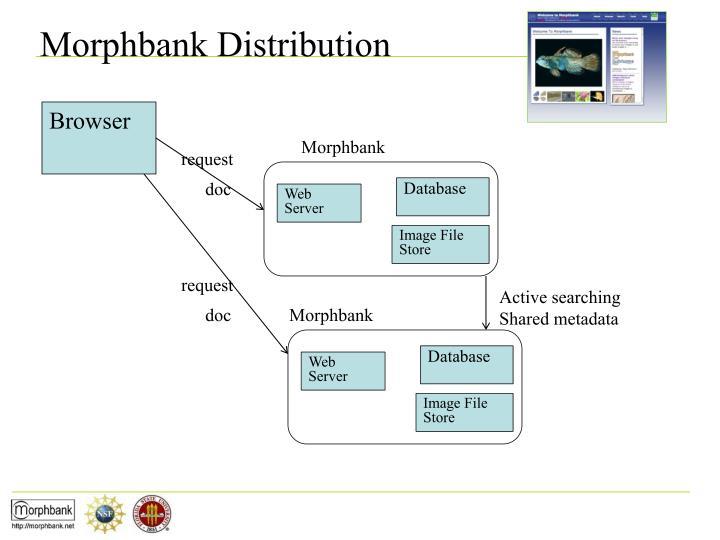 Morphbank Distribution