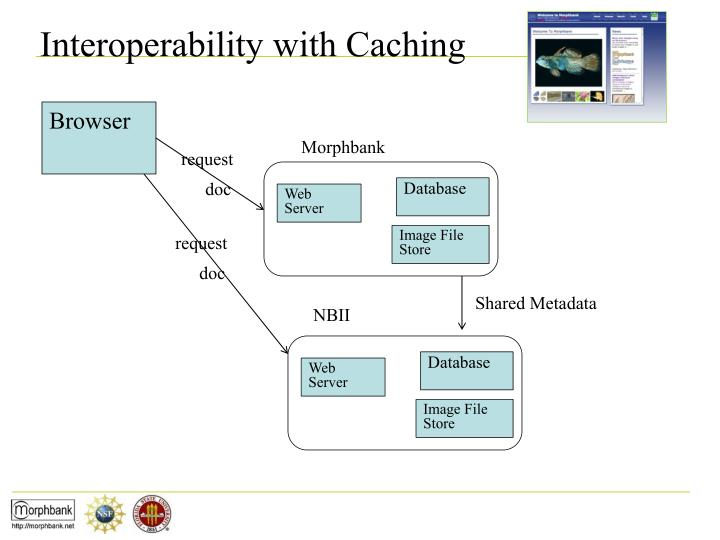 Interoperability with Caching