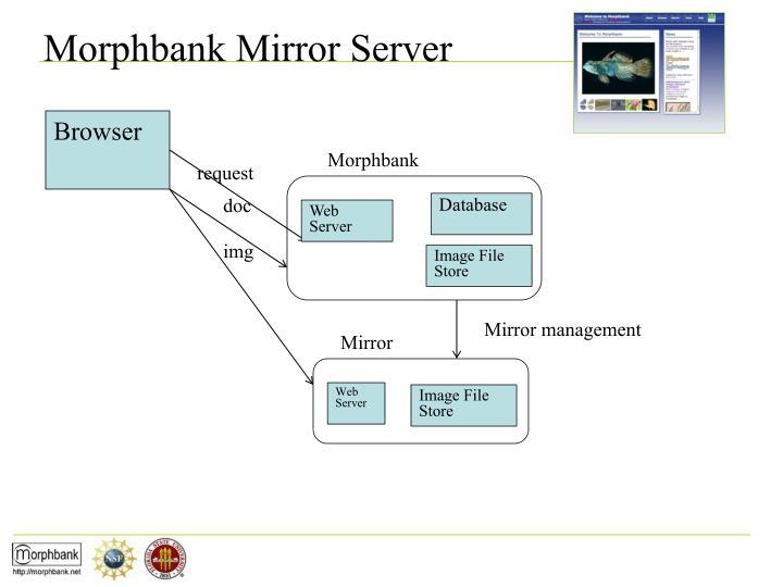 Morphbank Mirror Server