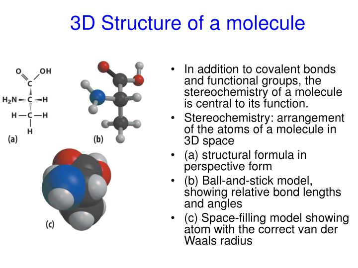 3D Structure of a molecule