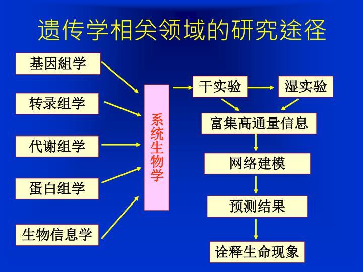 遗传学相关领域的研究途径