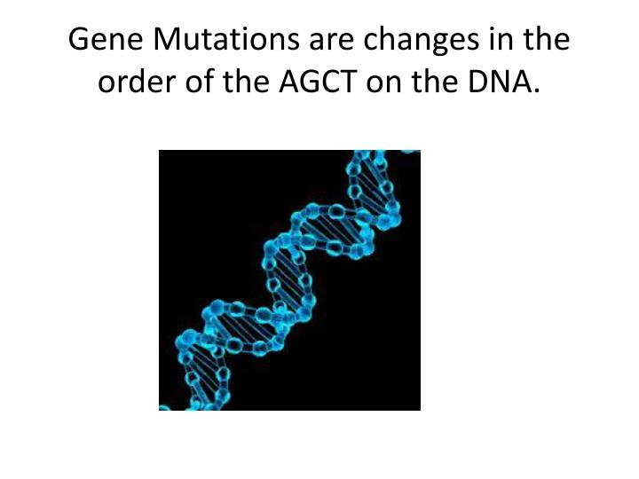 Gene Mutations are changes in the order of the AGCT on the DNA.