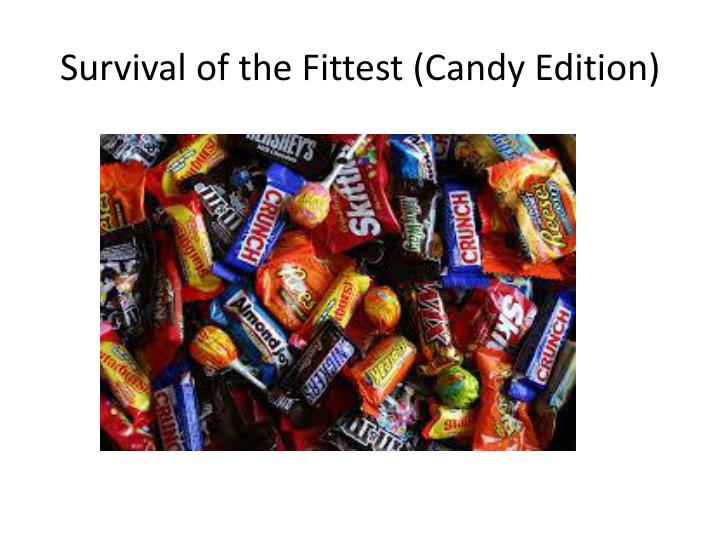 Survival of the Fittest (Candy Edition)