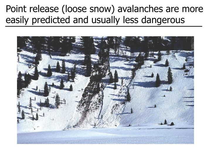 Point release (loose snow) avalanches are more easily predicted and usually less dangerous