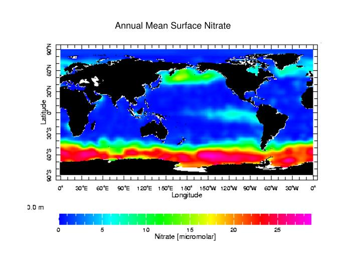 Annual Mean Surface Nitrate