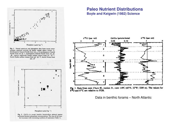 Paleo Nutrient Distributions