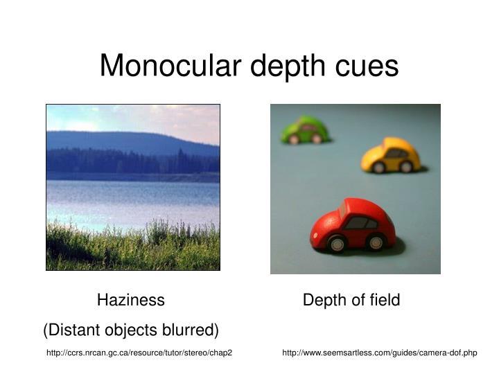 Monocular depth cues