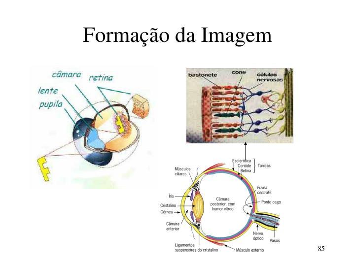 Formação da Imagem