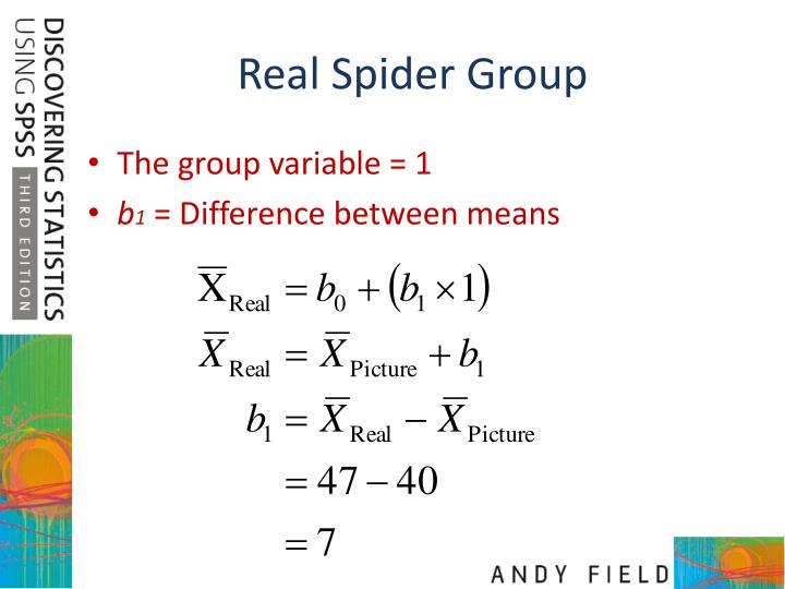 Real Spider Group
