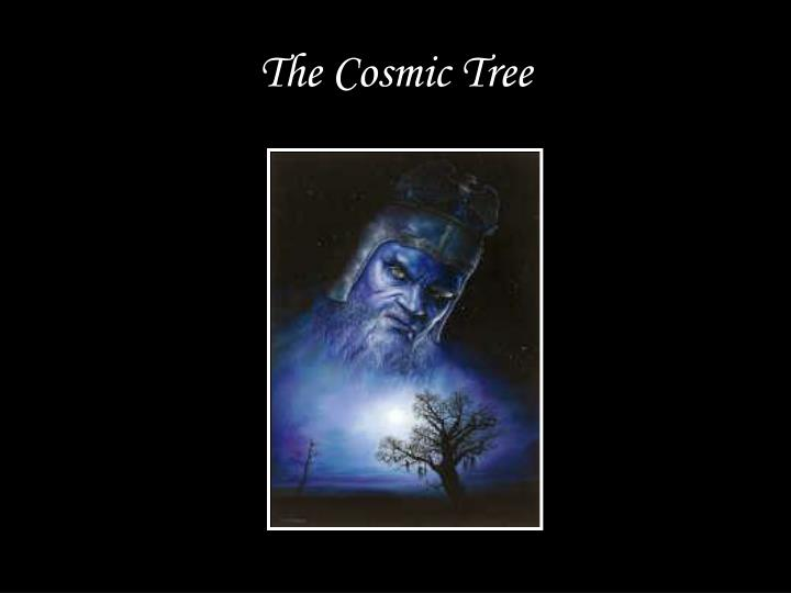 The cosmic tree