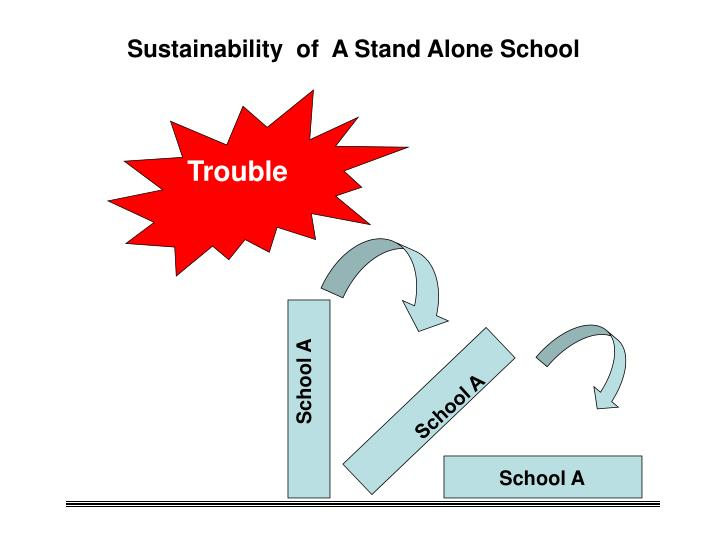 Sustainability  of  A Stand Alone School