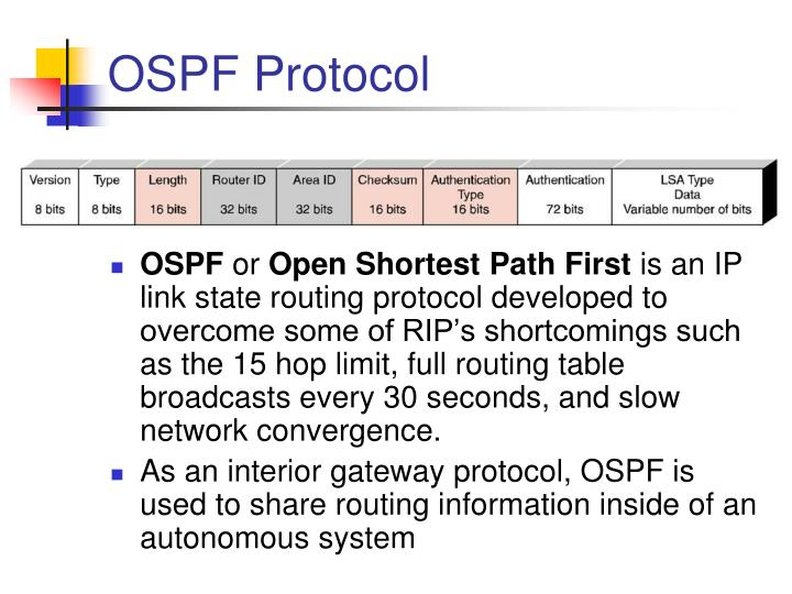 OSPF Protocol