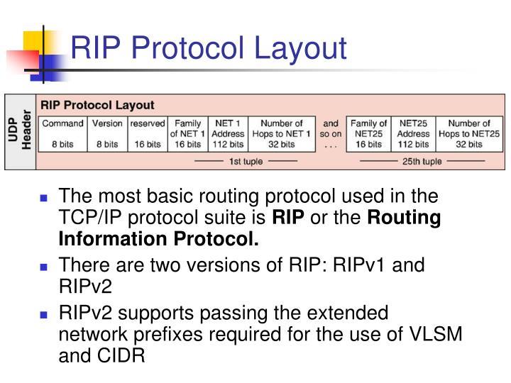 RIP Protocol Layout
