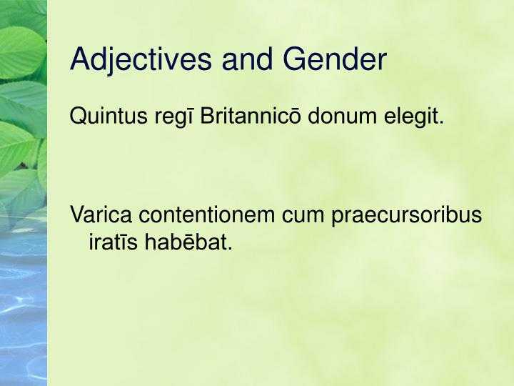 Adjectives and Gender