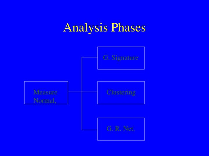 Analysis Phases