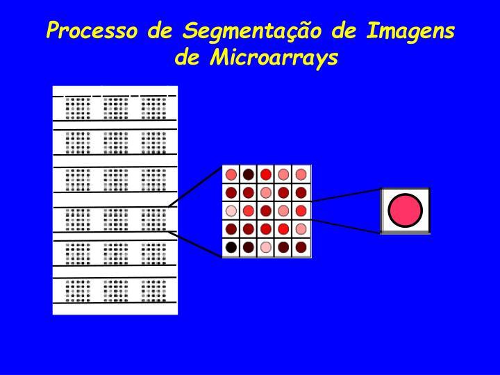 Processo de Segmentação de Imagens de Microarrays