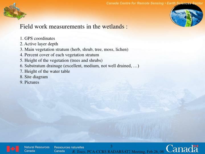 Field work measurements in the wetlands :