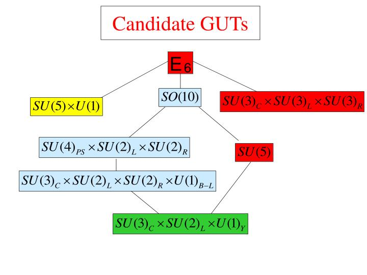 Candidate GUTs