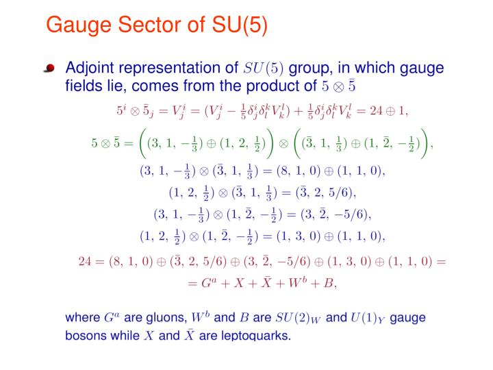 Gauge Sector of SU(5)