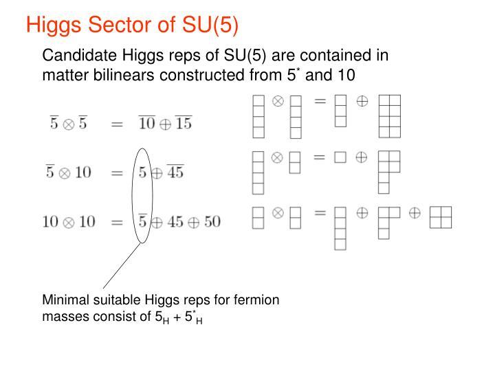 Higgs Sector of SU(5)