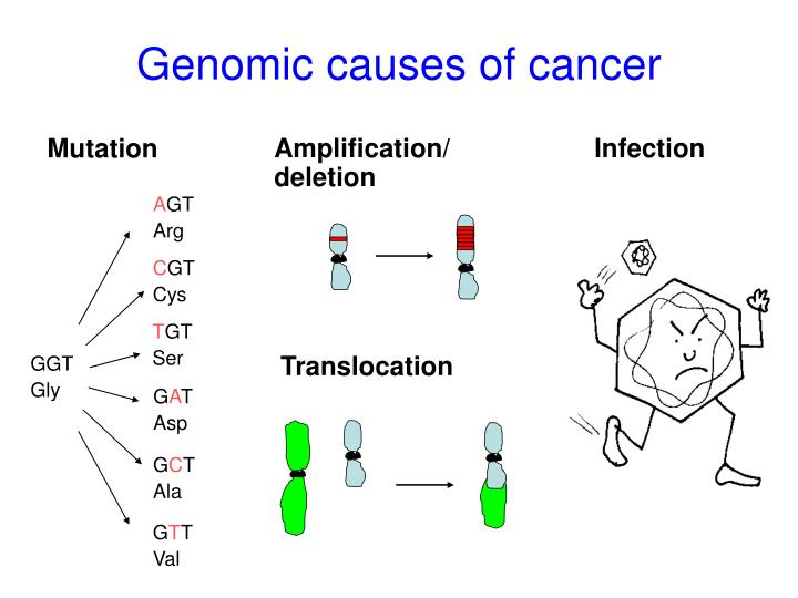 Genomic causes of cancer