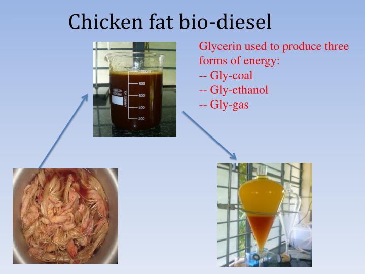 Chicken fat bio-diesel