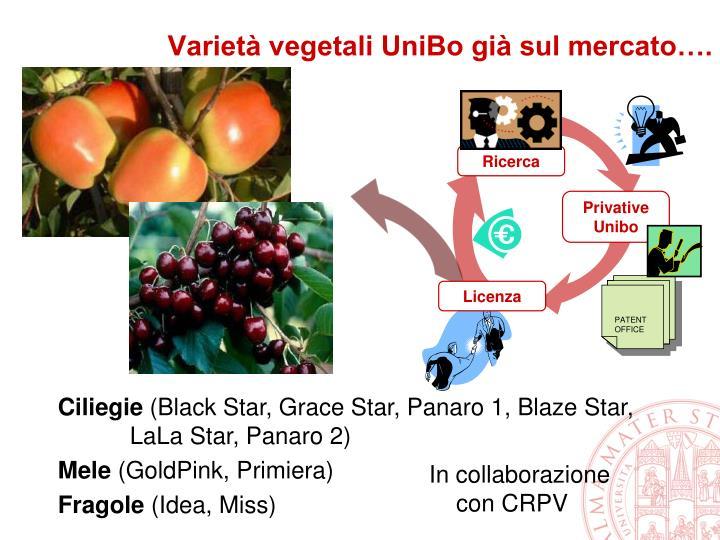 Varietà vegetali UniBo già sul mercato….