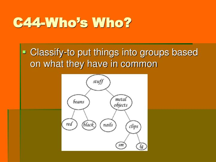 C44-Who's Who?