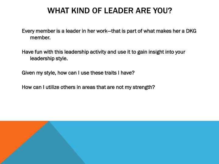 WHAT KIND OF LEADER ARE YOU?