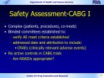 safety assessment cabg i