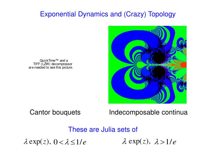 Exponential Dynamics and (Crazy) Topology