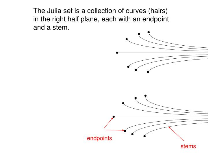 The Julia set is a collection of curves (hairs) in the right half plane, each with an endpoint