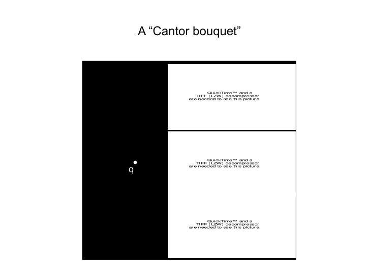 """A """"Cantor bouquet"""""""