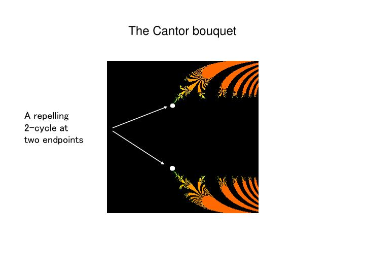 The Cantor bouquet