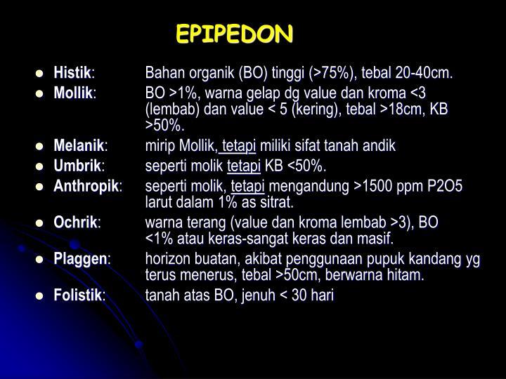 EPIPEDON