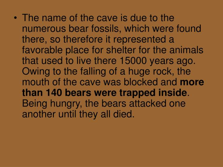 The name of the cave is due to the numerous bear fossils, which were found there, so therefore it represented a favorable place for shelter for the animals that used to live there 15000 years ago. Owing to the falling of a huge rock, the mouth of the cave was blocked and