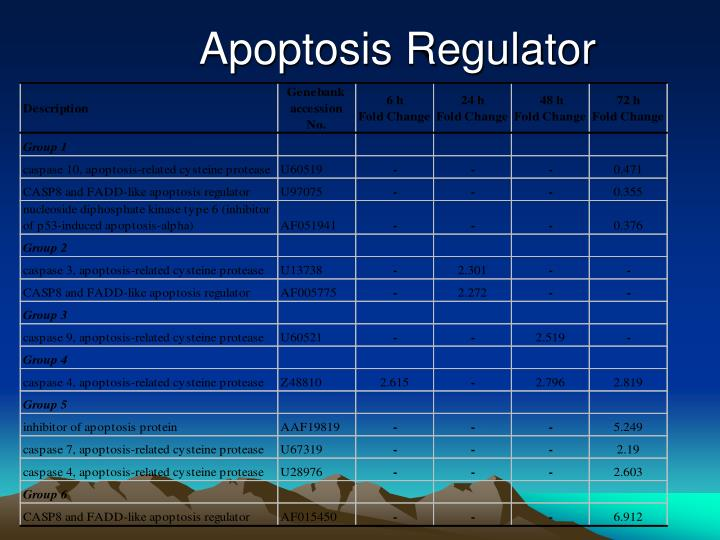 Apoptosis Regulator
